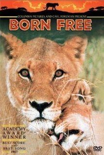 Watch Born Free