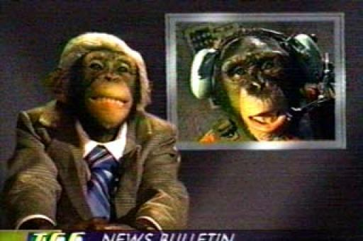 The Chimp Channel S01E13
