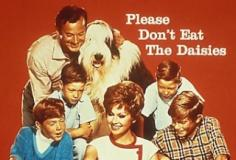 watch Please Don't Eat the Daisies S2 E28 online