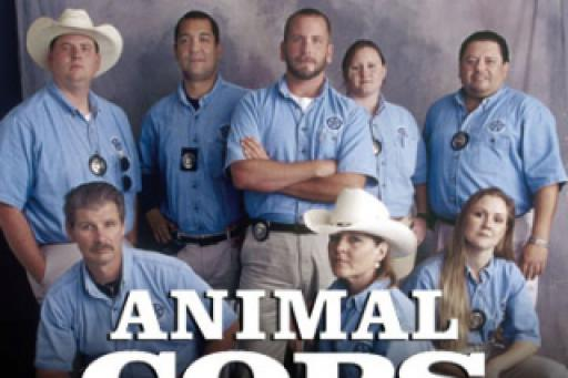 watch Animal Cops: Houston S10E4 online
