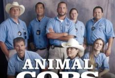 watch Animal Cops: Houston S9 E21 online