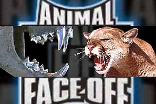 Animal Face Off S01E12