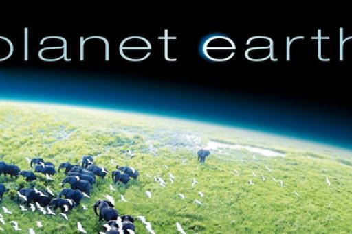 Planet Earth S01E11