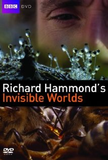 Watch Richard Hammond's Invisible Worlds