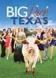 Watch Big Rich Texas