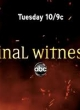 Watch Final Witness