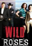 Watch The Wild Roses