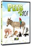 Watch Pets 101