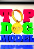 Watch Top Dog Model