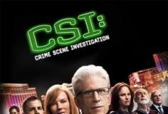 watch Csi: Crime Scene Investigation S14 E11 online