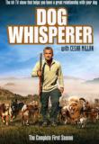 Watch Dog Whisperer with Cesar Millan: Family Edition