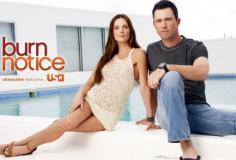 watch Burn Notice S7 E13 online