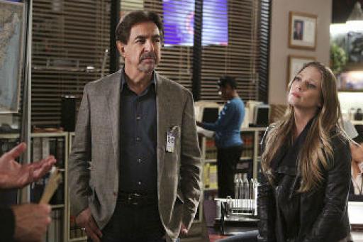 watch Criminal Minds S10 E21 online