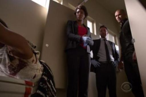 Criminal Minds S11E13