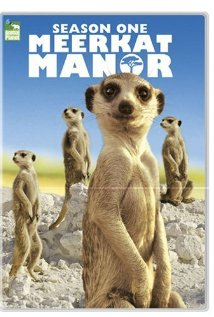 Watch Meerkat Manor