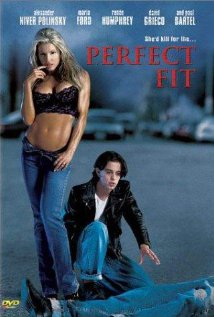 Watch Perfect Fit Online