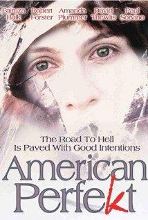 Watch American Perfekt Online