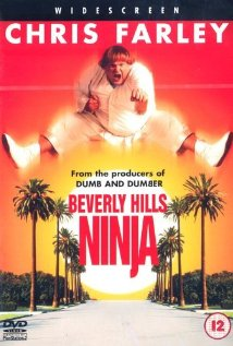 Watch Beverly Hills Ninja Online