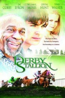 Watch The Derby Stallion Online