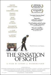 Watch The Sensation of Sight Online