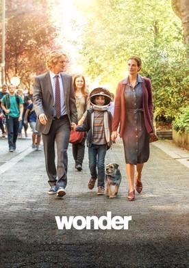 Watch Wonder Online
