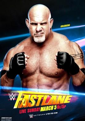 Watch WWE Fastlane  Online