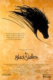 Watch The Black Stallion Online
