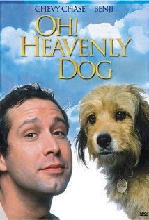 Watch Oh Heavenly Dog Online