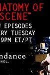 Watch Anatomy of a Scene Online