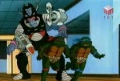 Teenage Mutant Ninja Turtles (1987) S10E08