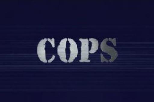 Cops S32E19