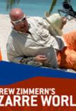 Watch Andrew Zimmern's Bizarre World