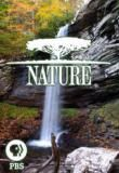 Watch Nature