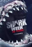 Watch Shark Week