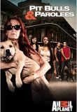 Watch Pit Bulls and Parolees