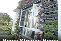 Home Strange Home S01E12