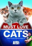 Watch Must Love Cats Online