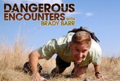 Dangerous Encounters S07E06