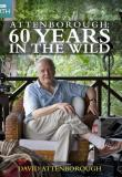 Watch Attenborough: 60 Years In The Wild