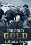 Watch ICE COLD GOLD Online