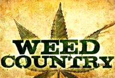 Weed Country S01E06