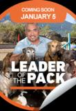 Watch Cesar Millan's Leader of the Pack