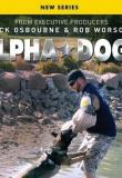 Watch Alpha Dogs