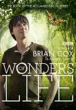 Watch Wonders Of Life Online