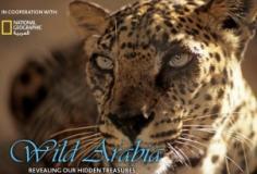 Wild Arabia S01E03