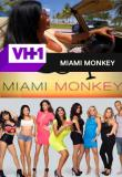 Watch Miami Monkey