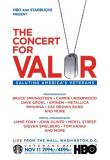 Watch The Concert for Valor