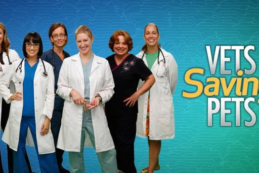 Vets Saving Pets S02E08