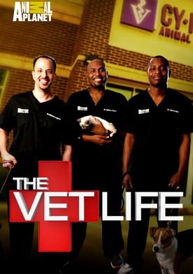 Watch The Vet Life Online