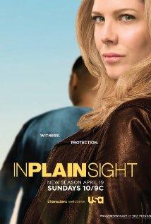 Watch In Plain Sight Online